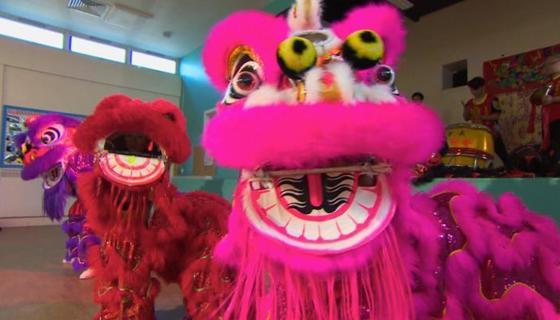 Tlgc chinese lion dance hero